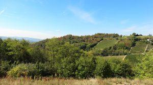 Piemonte : Prachtig gelegen verbouwproject nabij Acqui Terme