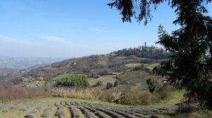 Piemonte: Alleenstaande woning met zwembad, panoramisch uitzicht, wandelafstand van het dorp.