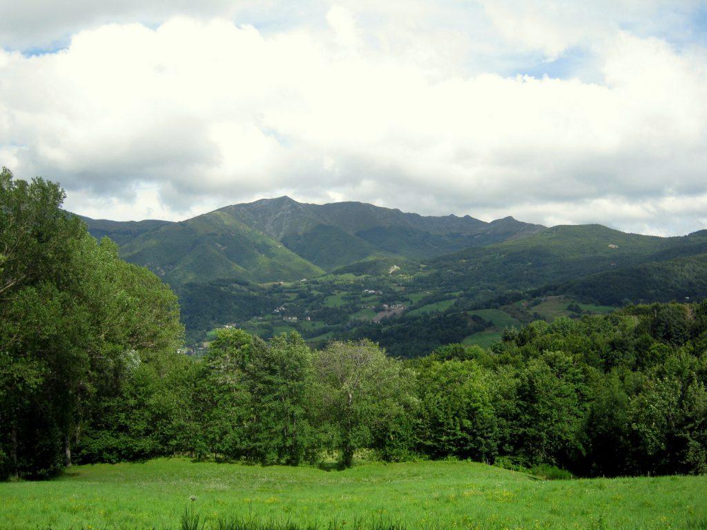 Toscane: terrein van 55000 m2 met te renoveren rustico