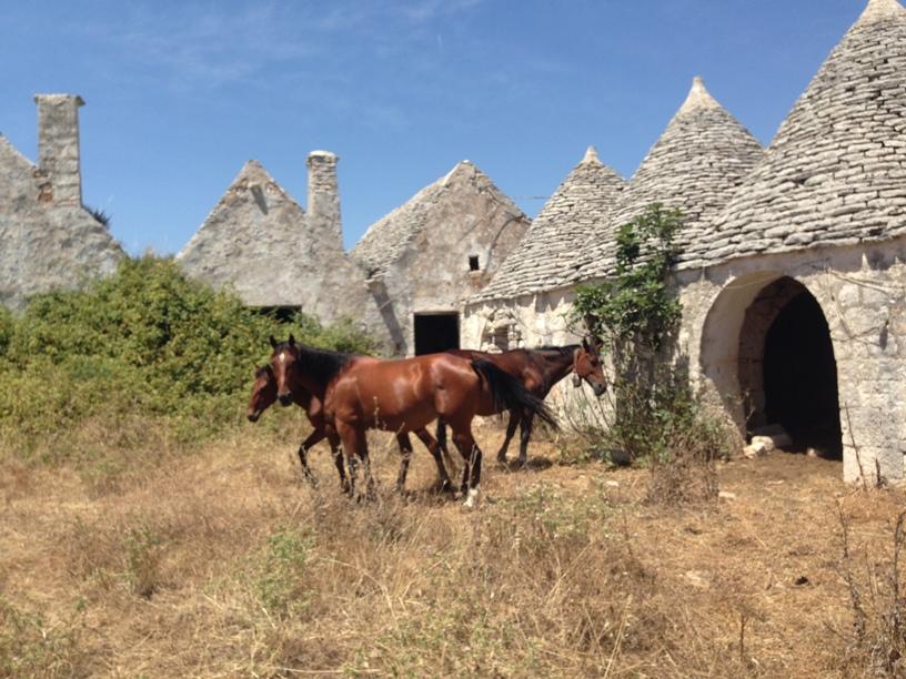 Puglia: Indrukwekkende Masseria met trulli in Agro di Martina Franca