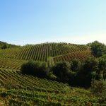 Goedkope (land)bouwgrond kopen in Italië