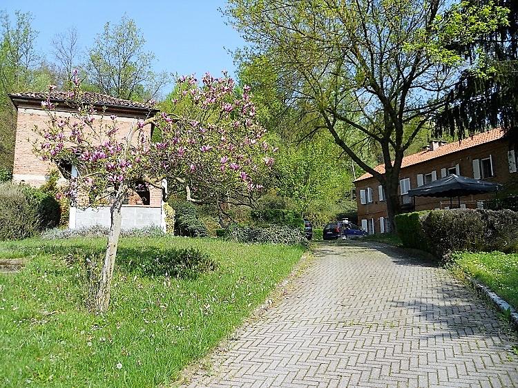 Piemonte: landelijke alleenstaande woning met grote tuin aan zacht prijsje